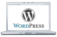 Produktion av hemsida framförallt med wordpress.